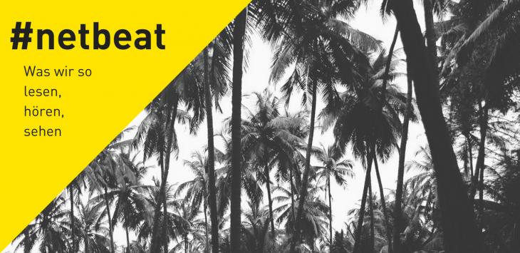 #netbeat 7/17: Sexismus unter Palmen, Neue Nachbarn und Hearables