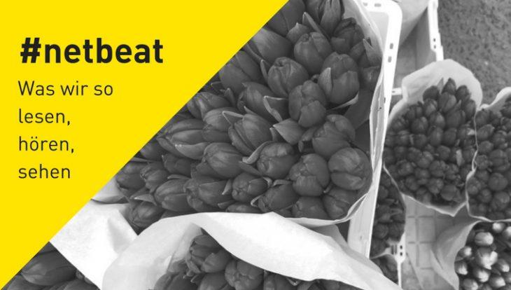 #netbeat 02/18: Weltfrauentag – Kein Tag, um Blumen zu verschenken