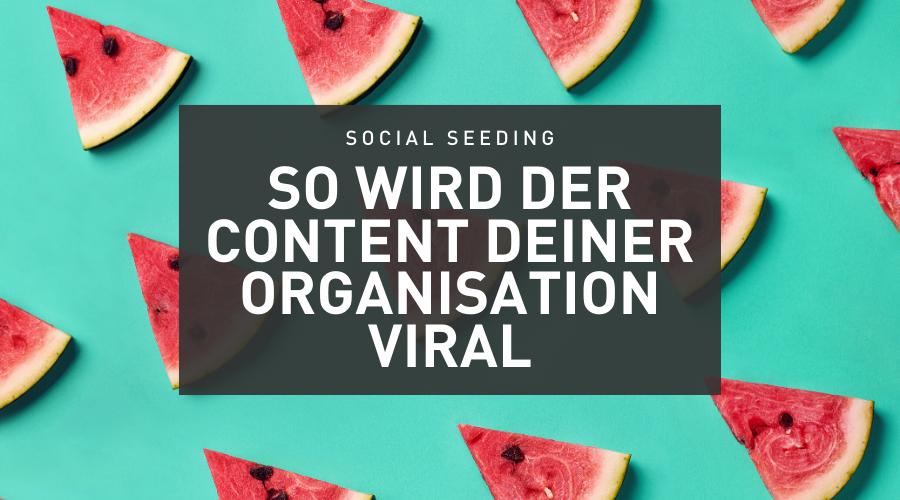 So wird der Content deiner Non-Profit Organisation viral